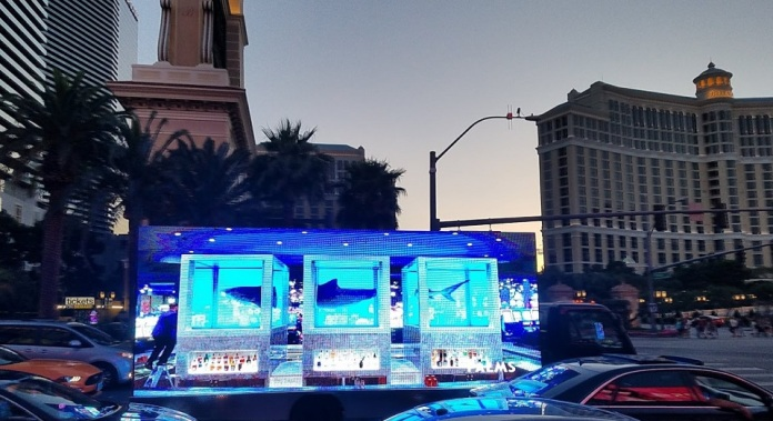 FLO Advertising Palms Casino